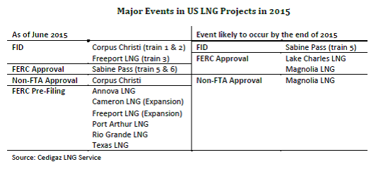 The Global LNG Market in 2015: Q1 First Estimates and Outlook - Cedigaz
