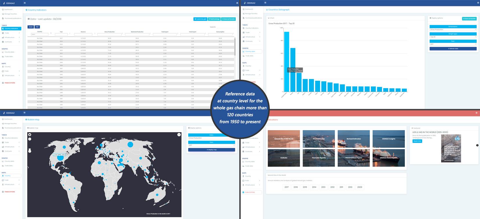 Cedigaz databases - Cedigaz